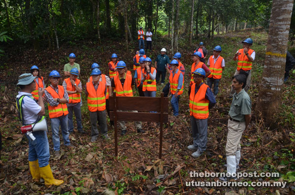 Visitors being briefed by forest officers at the 13-year-old Seraya Tembaga planted area.