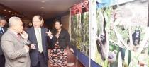 天猛公拿督劉利民在拉昔邁署理副校長的陪同下,參觀森林保護展覽。